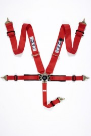 NEW TRS Pro 4 point aircraft belt